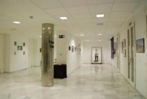 Exposición de 13+