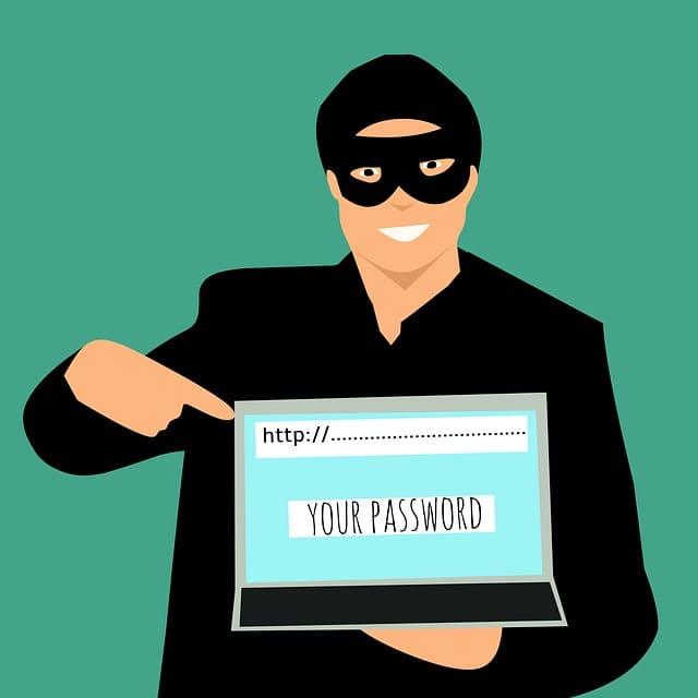 El sistema de seguridad ssl protege del robo de información confidencial